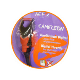 cameleonV27